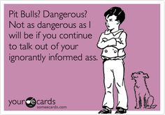 Pit Bulls? Dangerous? Not as dangerous as I will be if you continue to talk out of your ignorantly informed ass.