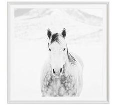 "Winter White Horse by Jennifer Meyers, 48 x 48"", Ridged Distressed, White, Mat"