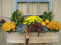 decorating window boxes for fall | First A Dream: Kale - Decorative and Edible + Garden Party