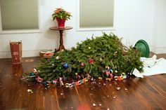 broken christmas tree - Google Search