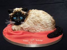 http://www.all-caked-out.co.uk/wp-content/gallery/novelty/best-cat-cake.jpg