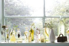 hope's kitchen window