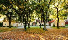 Thorsvi gård har 13 rum fördelade på 500 kvm.