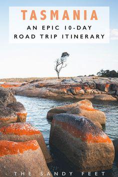The Perfect Tasmania Road Trip Itinerary tasmania australia roadtrip traveltips travel --- Best Places To Visit In Tasmania Brisbane, Melbourne, Sydney, Perth, Tasmania Road Trip, Tasmania Travel, Tasmania Australia, Visit Australia, Western Australia