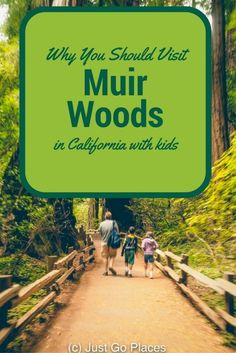 An explanation of what California redwoods are and why you should definitely visit the California Redwoods at Muir Woods with kids California With Kids, Places In California, California Vacation, Visit California, California Quotes, California Burrito, Ontario California, South California, California Mountains