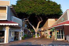 FRONT STREET PHOTO  This one time whaling village is now on the national register of historic places.  Lahaina is a Maui hotspot with many unique shops, restaurants and art gallerys.   Lahaina , Maui, Hawaii
