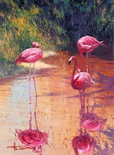 Scarlet Reflections Art Prints by Robert Hagan - Shop Canvas and Framed Wall Art… Flamingo Painting, Flamingo Art, Pink Flamingos, Framed Wall Art, Wall Art Prints, Framed Prints, Reflection Art, Reflection Pictures, Impressionism Art