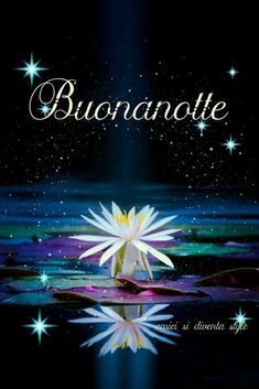 Italian Greetings, Good Morning Gif, Morning Msg, Good Night Wishes, Good Night Image, Son Luna, Dark Colors, Slaap Lekker, Italy