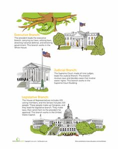 Worksheets: The Three Branches of Government