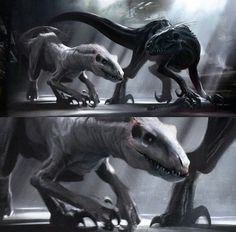 What if the Indoraptor had a sibling like the Indominus Rex did? If it did had a sibling do you belive the Indoraptor would have killed it like the Indominus Rex did? Jurassic World Raptors, Jurassic Park World, Prehistoric Creatures, Mythical Creatures, Jurassic Park Poster, Indominus Rex, Fantasy Beasts, Jurassic World Fallen Kingdom, Falling Kingdoms
