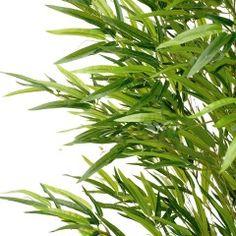 Kunstplant Japan Bamboe 70cm hoog met UV Safe TAUPINE blad*