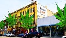 THE REAL DEAL: In the weeds: Brokers actively courting marijuana industry