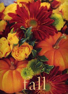 Fall Flowers Screensavers