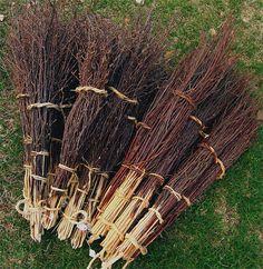 Ett knippe kvastar  ..a bunch of brooms