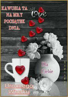 Kawka na wtorek Europa Tour, Good Morning, Pictures, Humor, Coffee, Frases, Good Morning Funny, Tuesday, Buen Dia