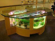 126 Best Aquarium Furniture Ideas