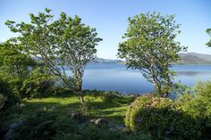 Romantic and Historic Carrig Country House Hotel is located on Carragh Lake on the famous Ring of Kerry driving route in Ireland. Country House Hotels, Blue Books, Ireland, Gardens, Romantic, River, Outdoor, Beautiful, Outdoors