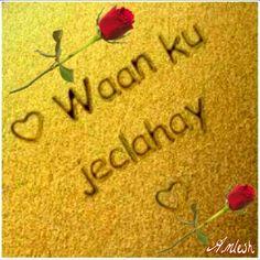 """""""""""""""""""Wan ku jeclahay Qiyaas la'aan''''''"""