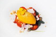 Oppskrift på mangosorbet - DN.no Mango Sorbet, Frisk, Eggs, Breakfast, Dessert, Food, Morning Coffee, Desserts, Eten