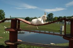 "On the ""Golden Goat Bridge""    (Amish Farm and House, Lancaster, PA)"