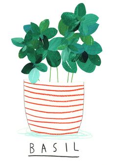Basil Plant Giclee Print by jennidesmond on Etsy, £30.00
