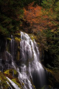 Panther Creek Falls · Gifford Pinchot National Forest · Carson · Washington · USA - by Tula Top Beautiful World, Beautiful Places, Gifford Pinchot National Forest, Evergreen State, Places Of Interest, Road Trip Usa, Amazing Nature, The Great Outdoors, Natural Beauty