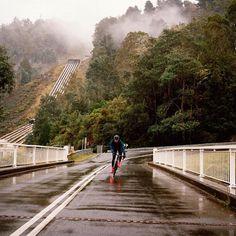 Central Tasmania Australia . Featured on @rapha | Photo by @jakestangel . #Rapha #Tasmanian #bicycle #bicicleta #cyclist #cycle #strava #ciclismo #fixie #roadcycling #fixedgear #cyclingphotos #stravacycling #bici #campagnolo #cyclingshots #bicicleta #cyclinglife #outsideisfree #stravaphoto #garmin #igerscycling #fahrrad #velo #bicicletta #ciclista #bisiklet #peloton #triathlon #lovemybike