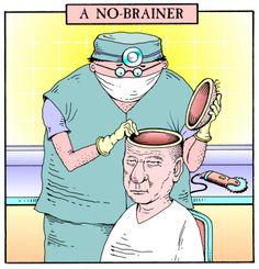 14 Best No brain in my skull! images | Skull, Skull anatomy, Skull ...