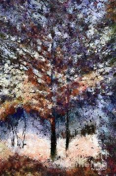 """""""Autumn Cedars"""" ~  © 2015 RC deWinter ~ All Rights Reserved"""