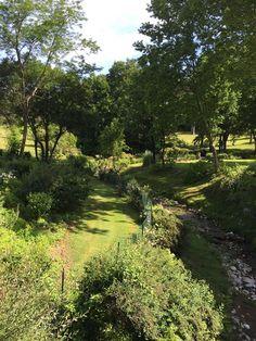 Il parco termale delle Terme di Stigliano #nature #green #tree #landscape