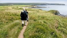 Fife Coastal Path Walking Tours & Holidays - Hiking in Scotland Walking Holiday, Walking Tour, Fife Coastal Path, Scotland Hiking, West Highland Way, Hiking Tours, Free Travel, Day Tours, Travel Guides