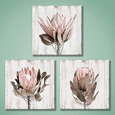 Botanical Plant Canvas Wall Art: Peony & Succulents Floral Painting Print for Dining Room x x 3 Panels) Flower Painting Canvas, Flower Artwork, Flower Canvas, Textured Canvas Art, Abstract Canvas Wall Art, Protea Art, Protea Flower, Floral Flowers, Bathroom Canvas Art