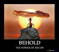 Behold the Power of Bacon