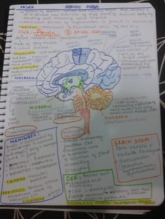 Visual notes-- I like taking notes this way (notes all around the page, drawings, different colors), I find it usually helps me