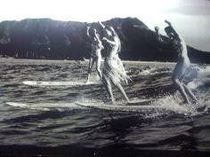 surf. surf ... surf!  surf surf?