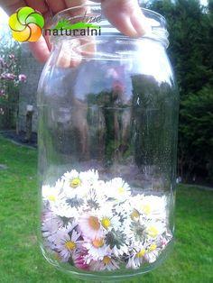 Edible Flowers, Mason Jars, Glass Vase, Soap, Herbs, Health, Crafts, Art, Gardening
