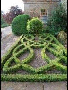 A petite Boxwood Knot Garden.