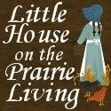 Little House Living: Making the most with what you have