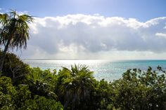 Little Stirrup Cay, Bahamas- Eeeek, so excited to cruise to this island soon... it's gorgeous!