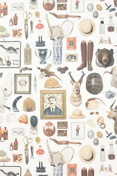 Antiquitarian wall paper - love it, not sure where it would work