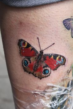 peacock butterfly tattoo by Mirek vel Stotker | Flickr - Photo Sharing!