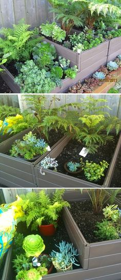 The best raised garden bed i have used. Pretty plant arrangements for my raised garden bed