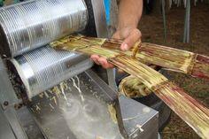 Artesania alimentaria, Jugo de caña energizante natural.Portoviejo Manabï: Foto Celia López