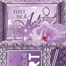 Orchid Accent Pack
