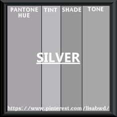 PANTONE SEASONAL COLOR SWATCH SILVER