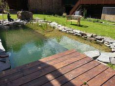 Koupací jezírko | Stavba jezírek Natural Swimming Pools, Outdoor Decor, Nature, Natural Pools, Naturaleza, Nature Illustration, Outdoors, Rock Pools, Natural