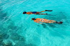 Things to do in Antigua besides working on your tan: Discover some of the Caribbean island's best tours, hikes and party spots Ecuador, Stuff To Do, Things To Do, Fl Keys, The Beautiful Country, Snorkelling, North Coast, White Sand Beach, Great Photos