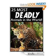 Free today 8.27.2013 25 Most Deadly Animals in the World! Animal Facts, Photos and Video Links. (25 Amazing Animals Series) Most Deadly Animal, Deadly Animals, Gone Tomorrow, Animal Facts, Video Link, Animals Of The World, Free Kindle Books, School Stuff, Wildlife