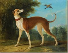 Jean Baptiste Oudry - Jean-Baptiste Oudry - Greyhound in a Landscape Painting