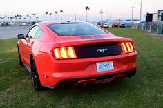 Editor in Chief Anne Proffit rides again with the latest Ford Mustang coupe now available with a liter turbocharged Ecoboost and Sync. Ford Mustang Ecoboost, Ford Mustang Coupe, Editor